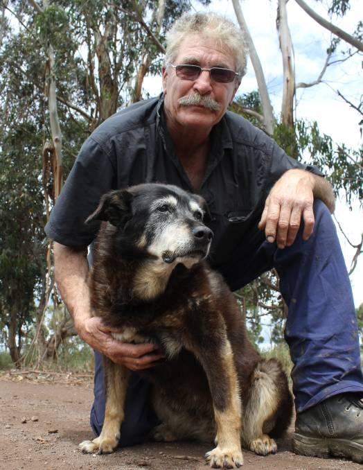 perro anciano dueño 30 años longevidad cariño