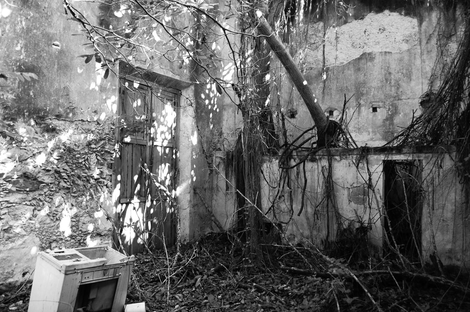 jardín sin reformar