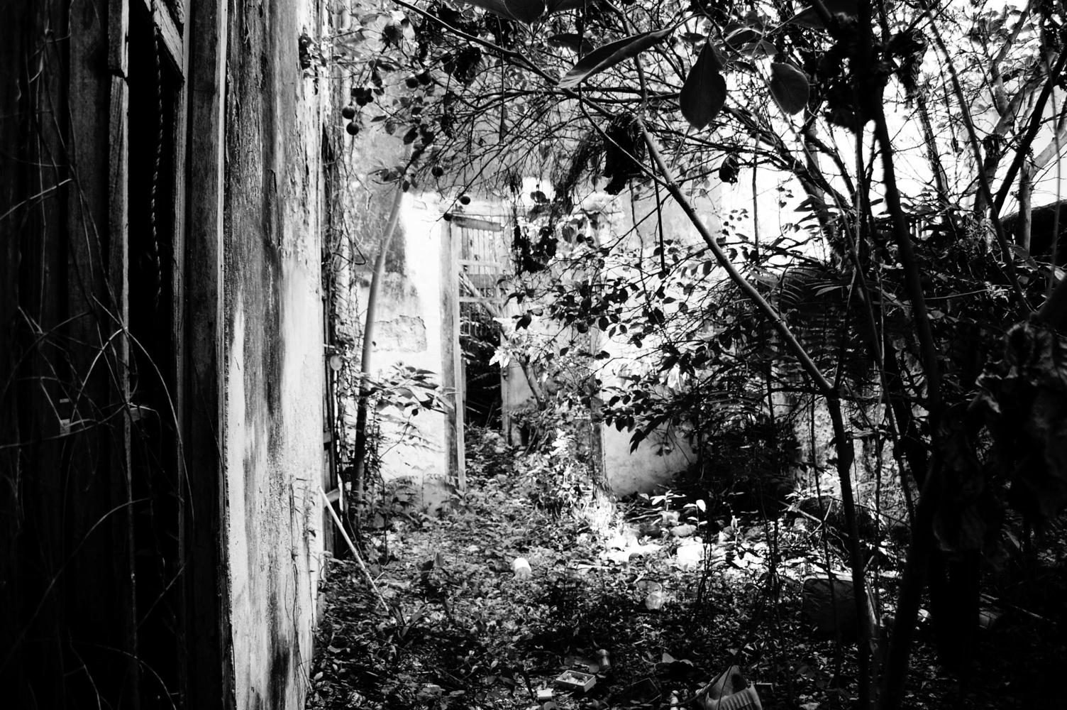 casa reformada jardín