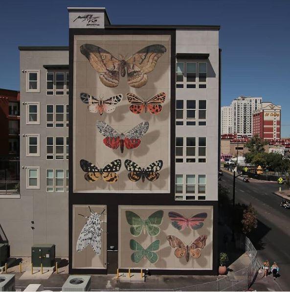 dibujo mariposas mural