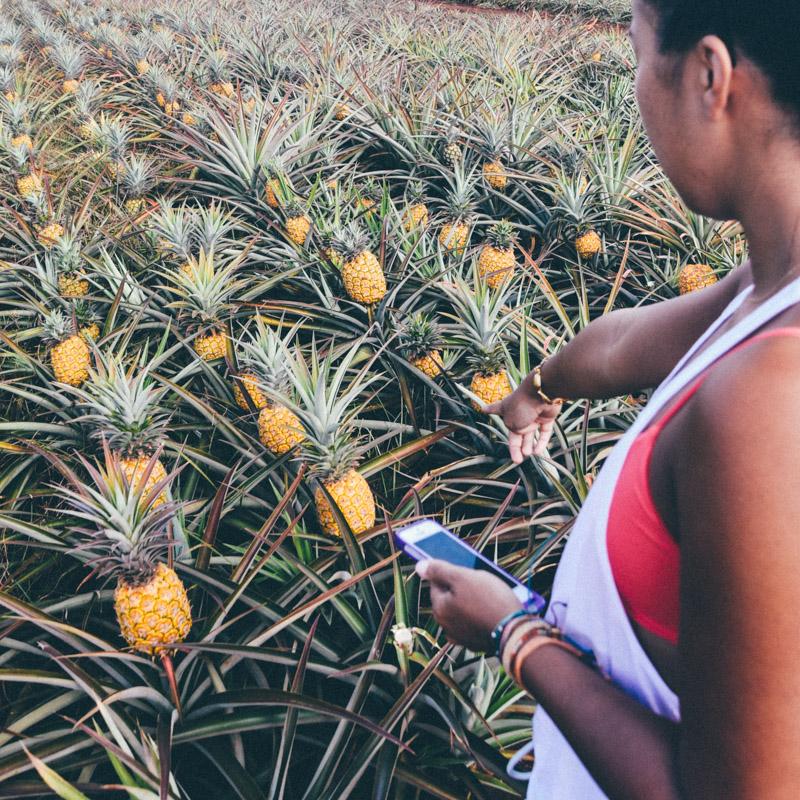 Mujer señalando granja de piñas