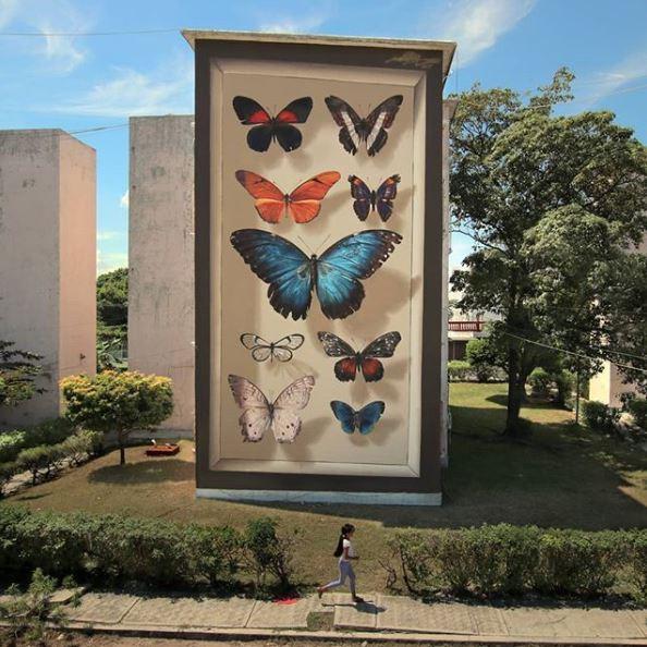 mantra mariposas