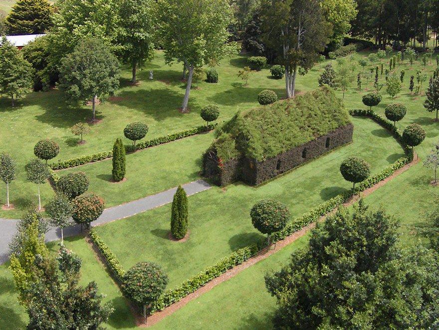 catedral con plantas