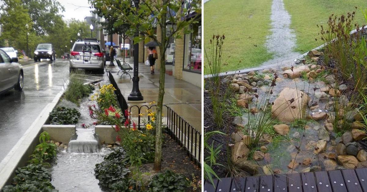 jardines-de-lluvia