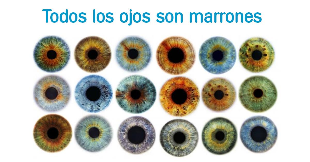 color-ojos-marrones