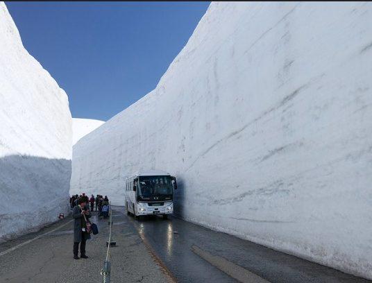 Autobus y gente bajo