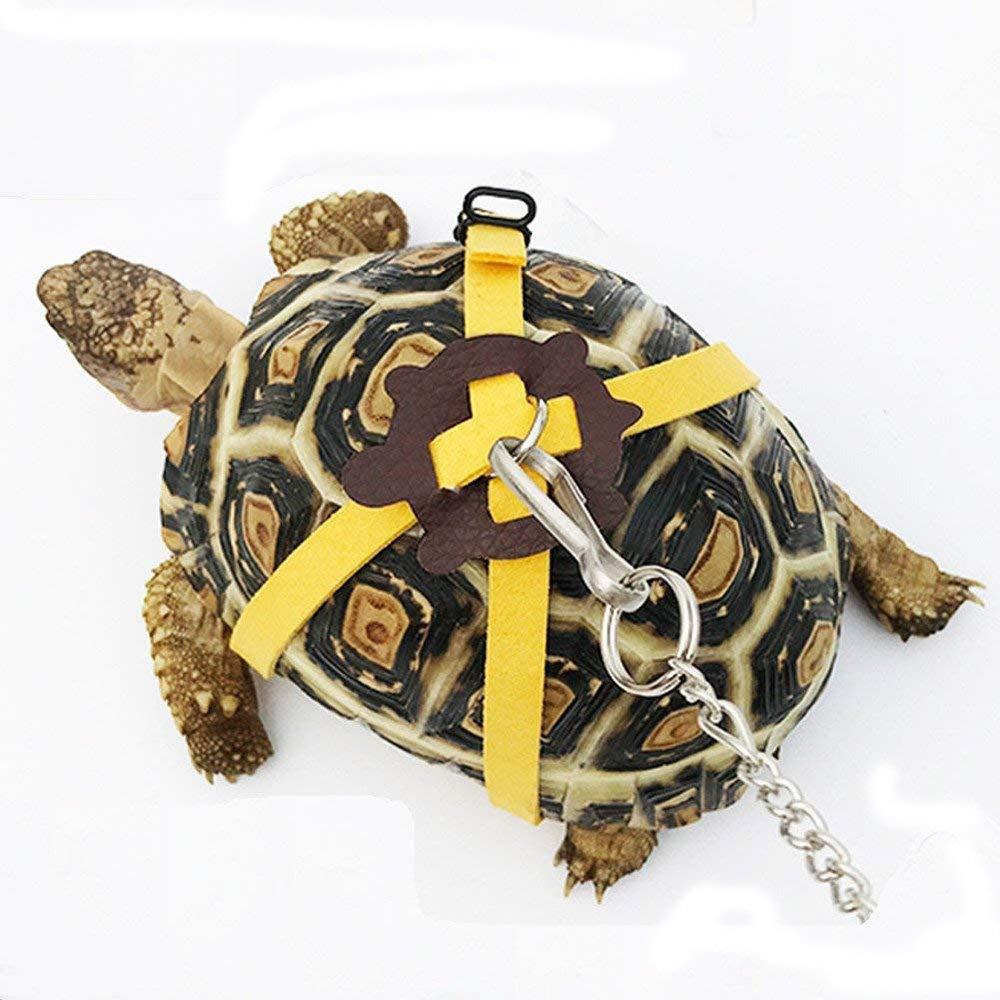 tortuga-arnés