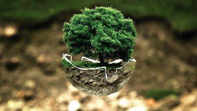 sobres y embalajes ecologicos