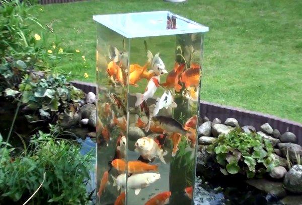acuario vertical en el patio o jardín