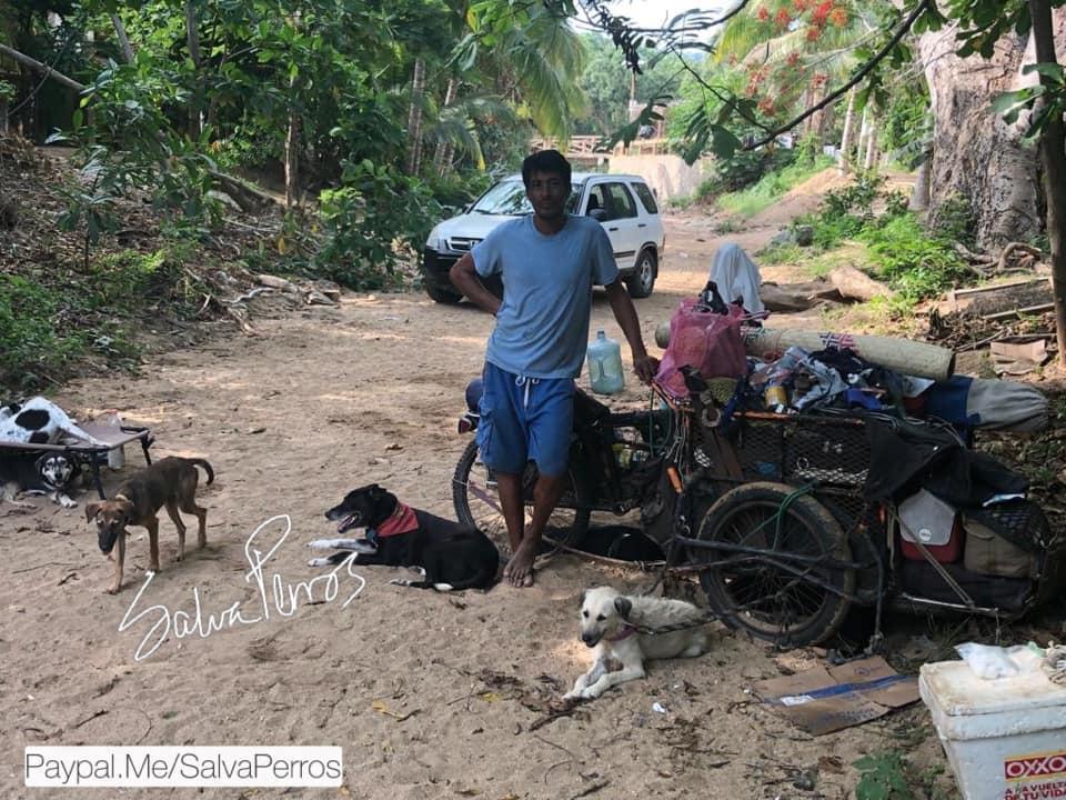 Edgardo y perros