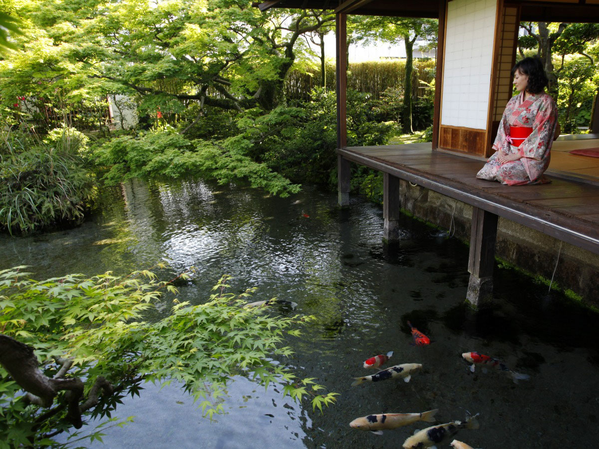 mujer sentada en un jardín japonés con peces koi