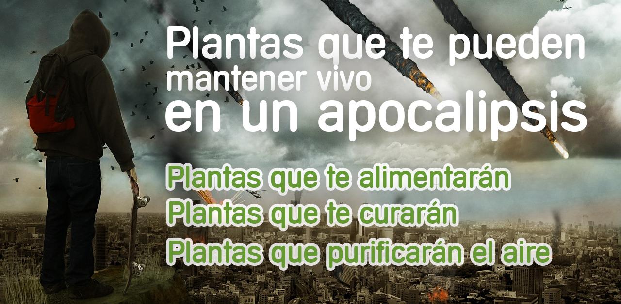 plantas-apocalipsis