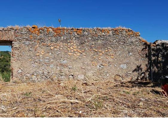 muro sin pintar arte en el campo