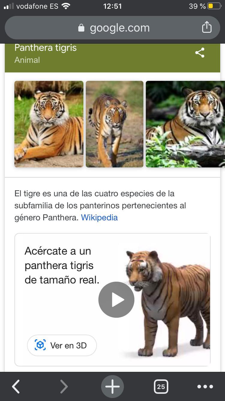 Google animales 3D