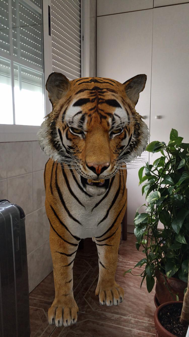 Tigre Google 3D 2