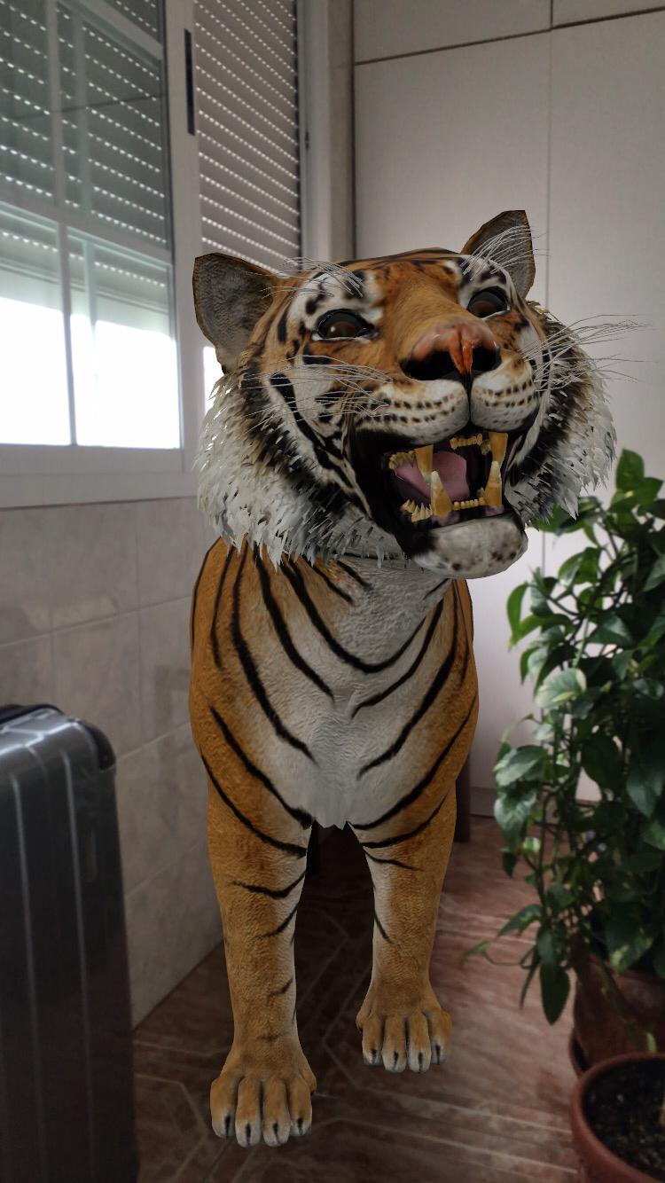 Tigre Google 3D