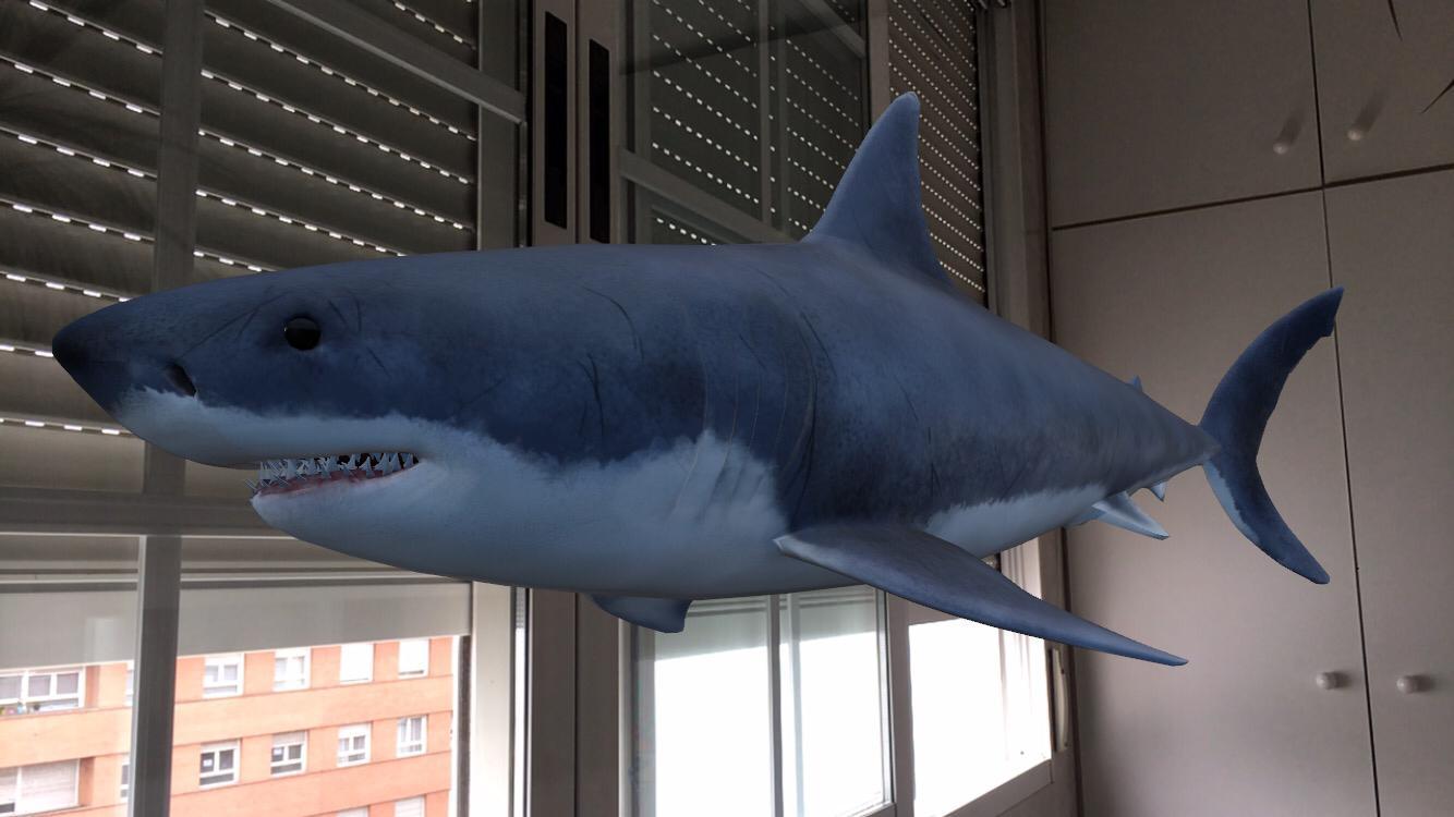 Tiburón 3D Google