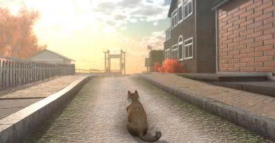 juego gato