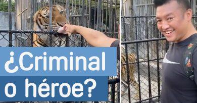 zoo-ilegal