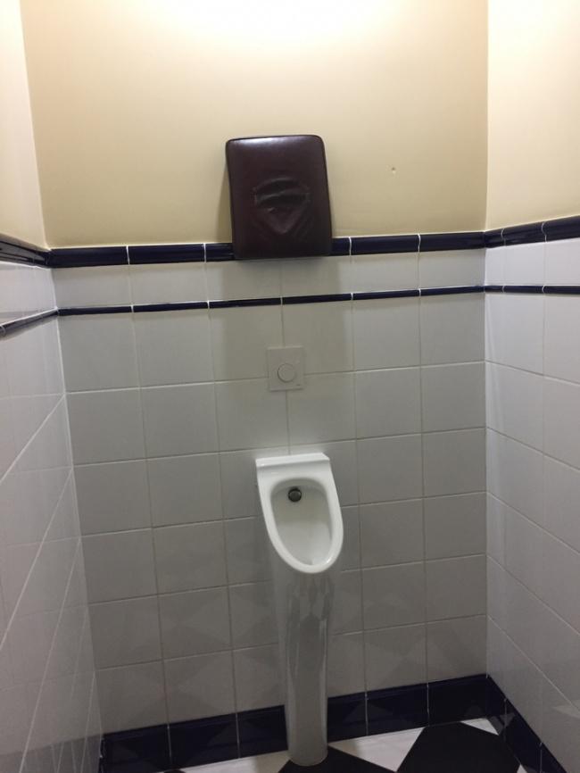 cojín urinario