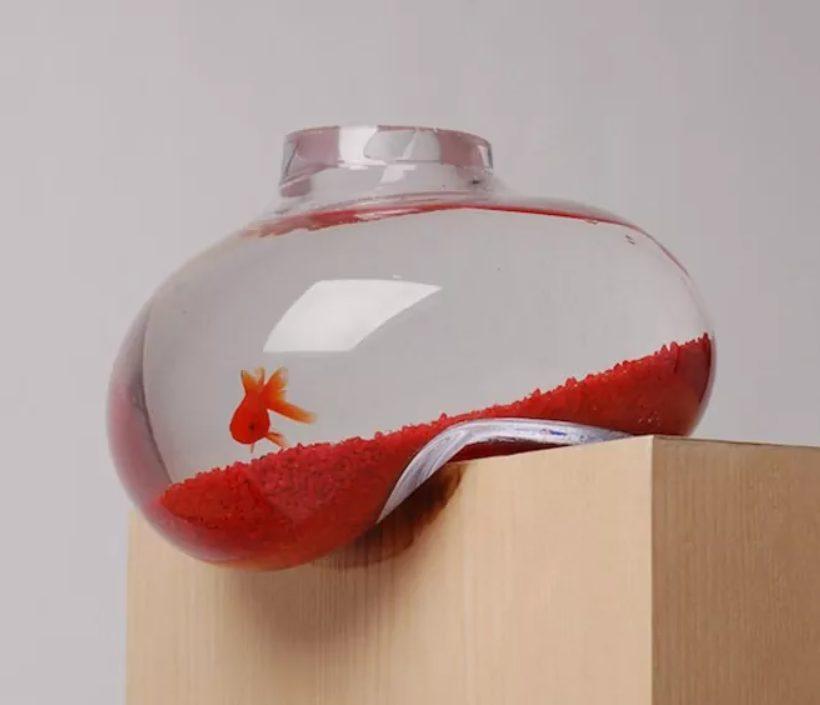 acuario de diseño
