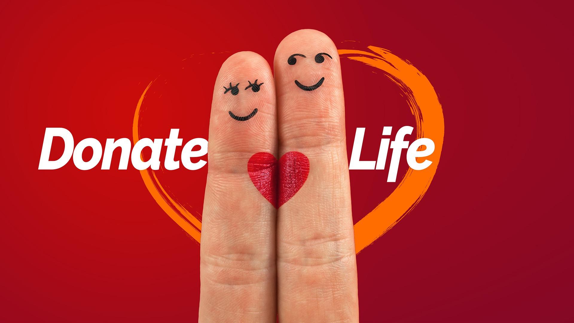 trasplante organos corazon