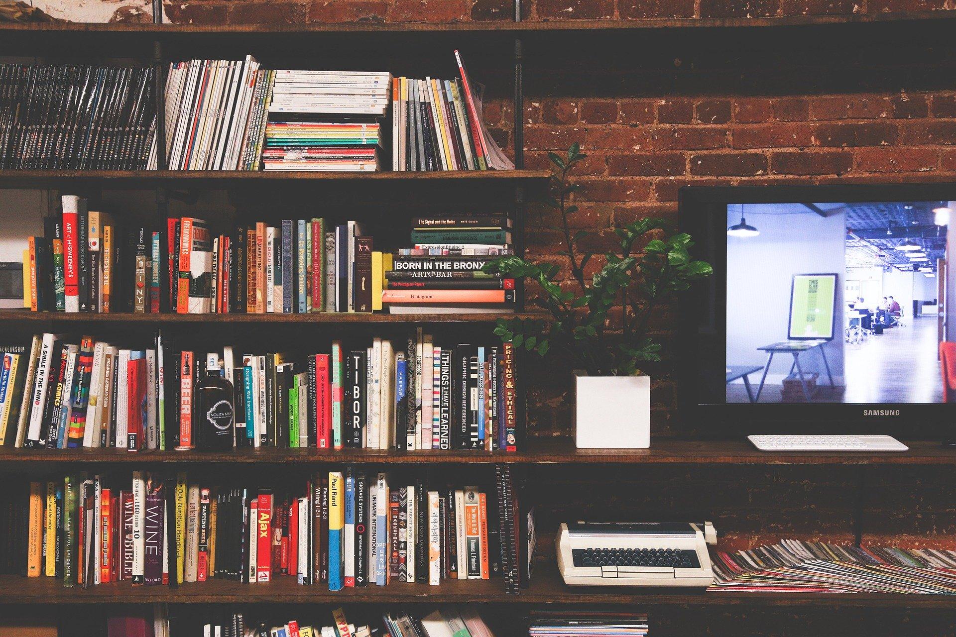 televisión estantería con libros