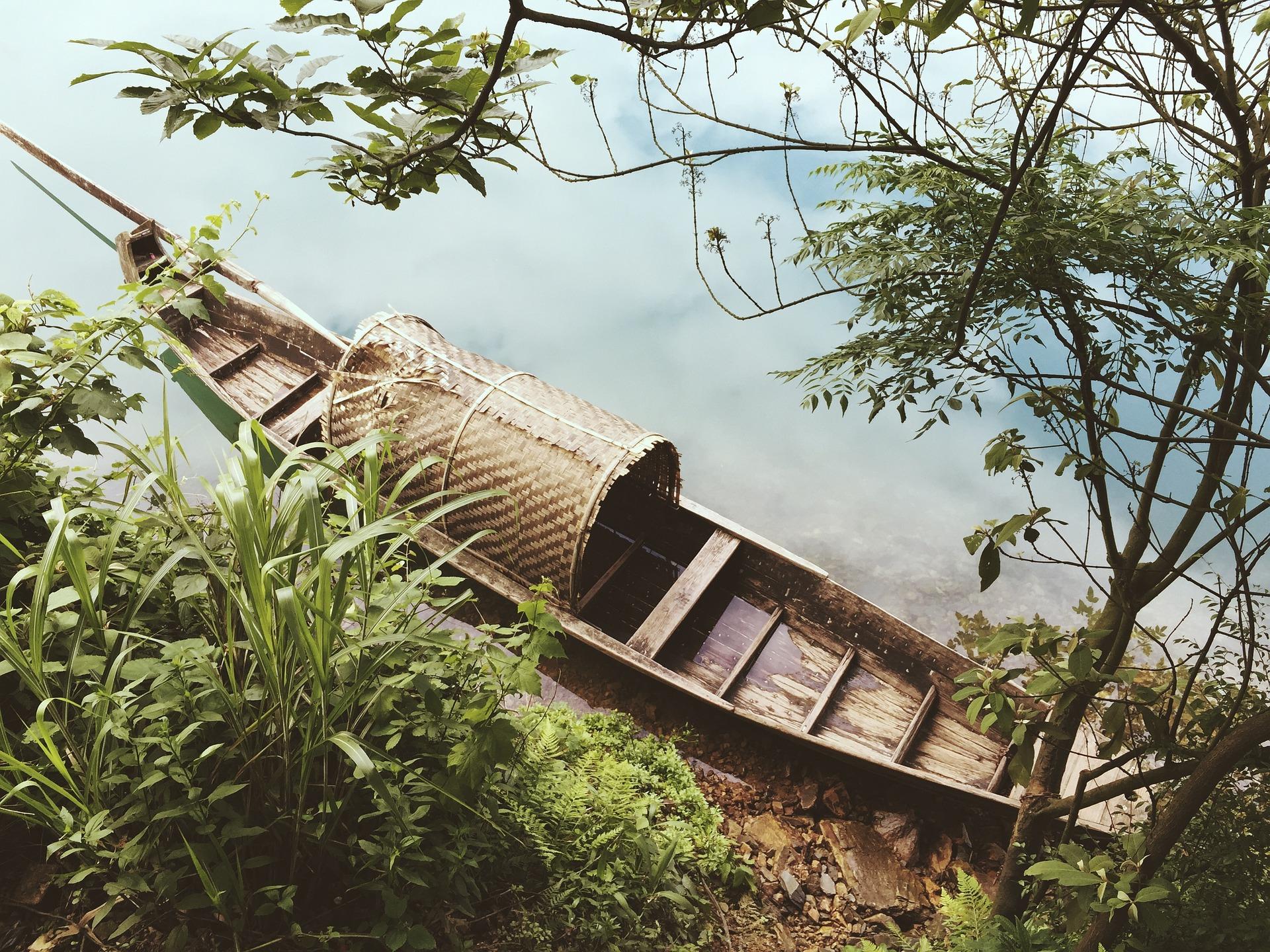 barcaza asiática