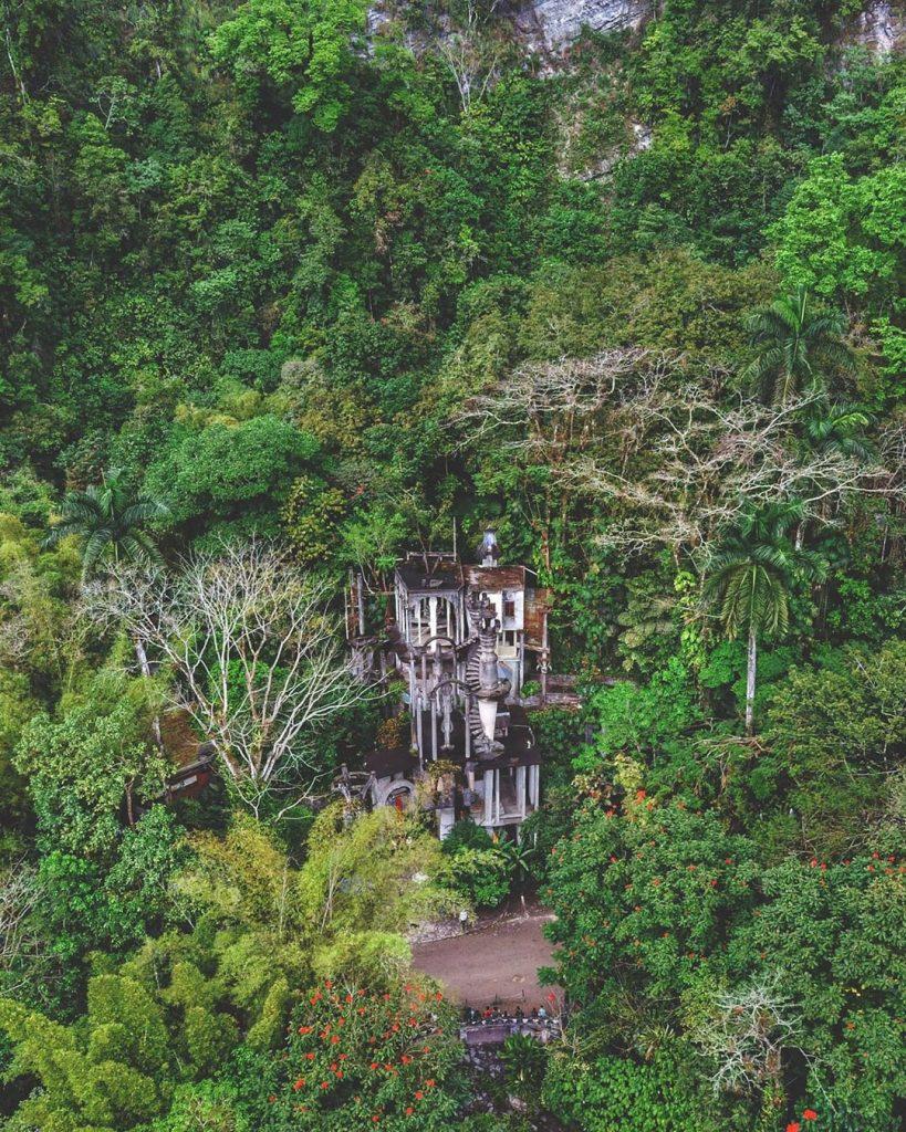 Jardín selva