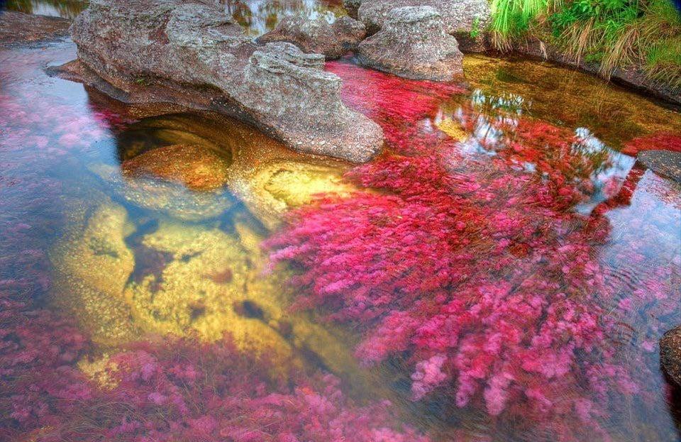 río arcoíris