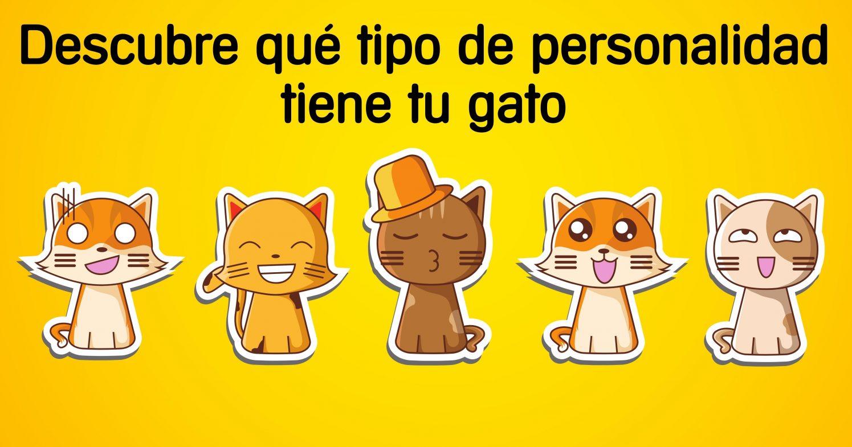 personalidad-gatos