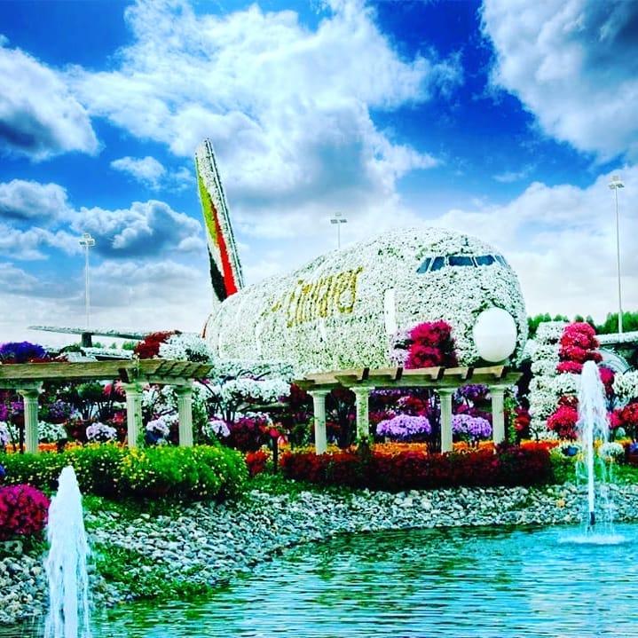 avión de flores fuente