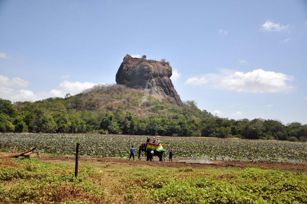 Elefante roca elevada