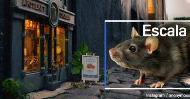 tienda-ratones