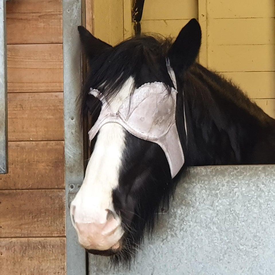 caballo sujetador