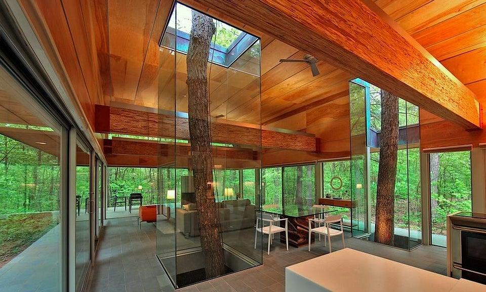 casa construida entorno a árboles