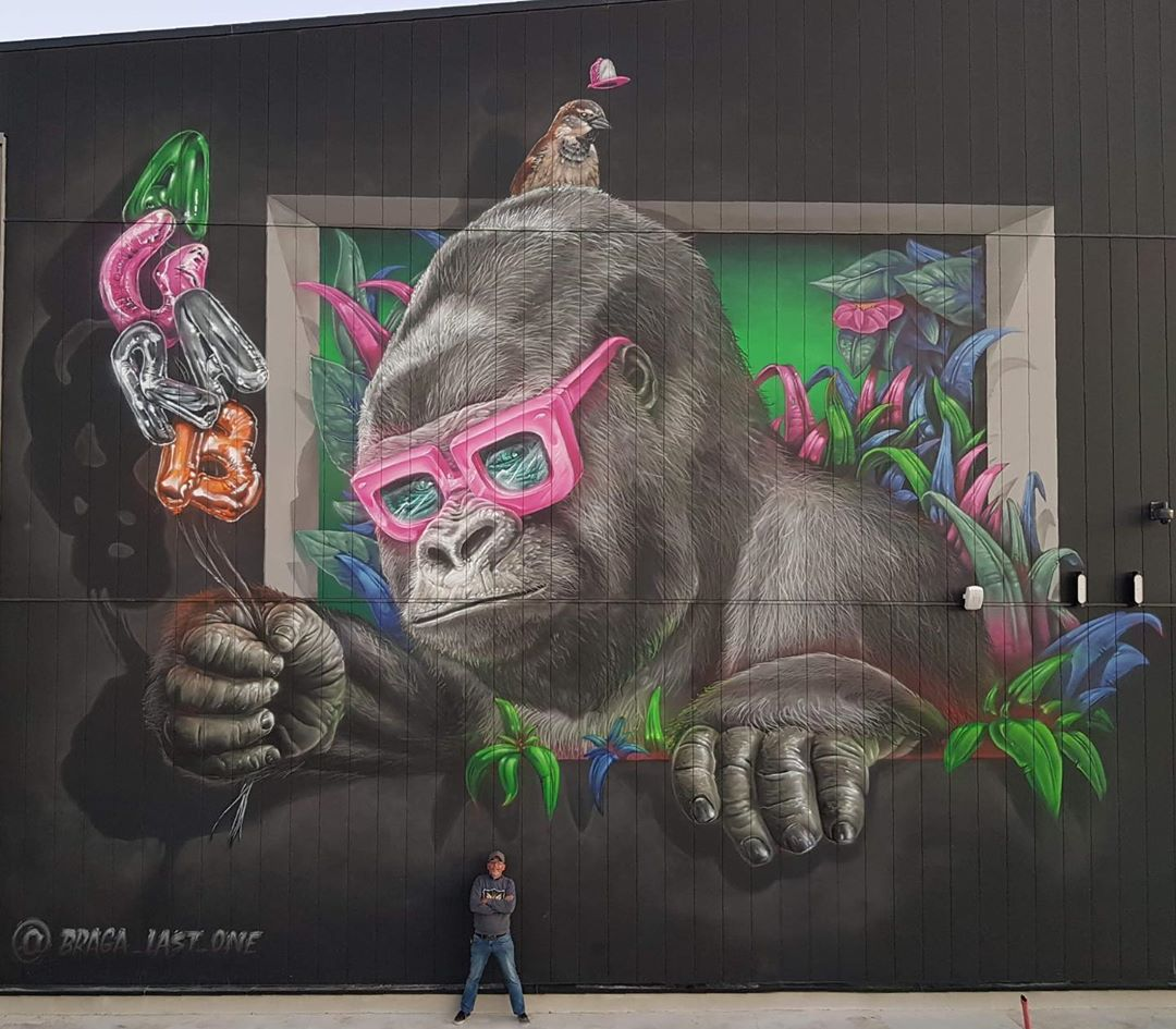 mono con gafas