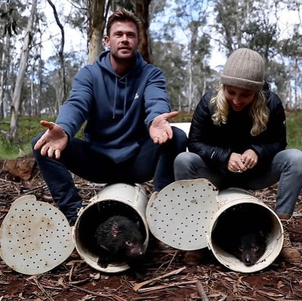 elsa pataky demonio tasmania