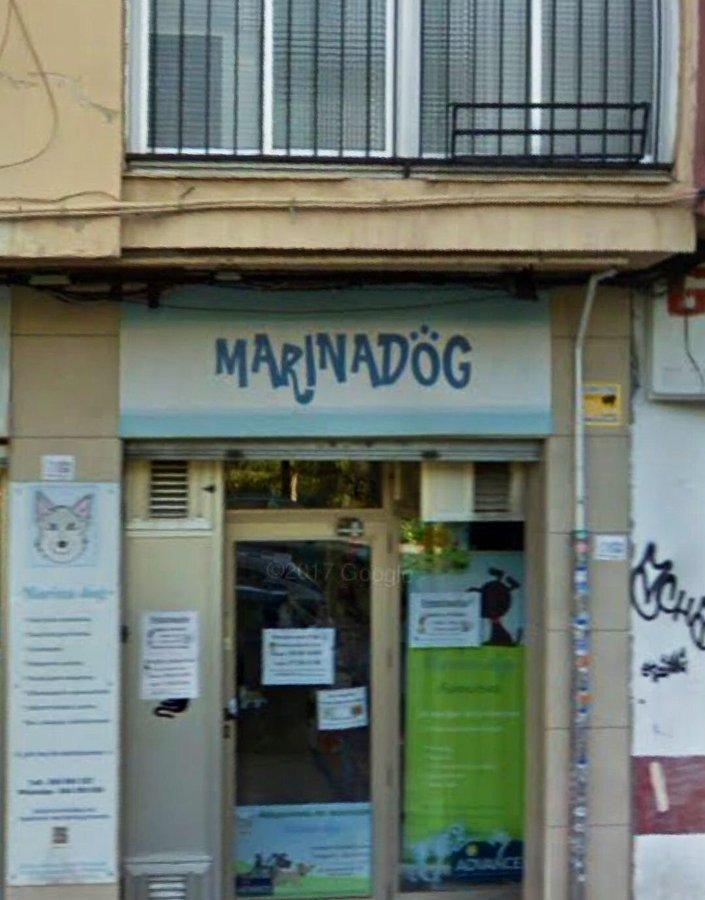 Marina Dog