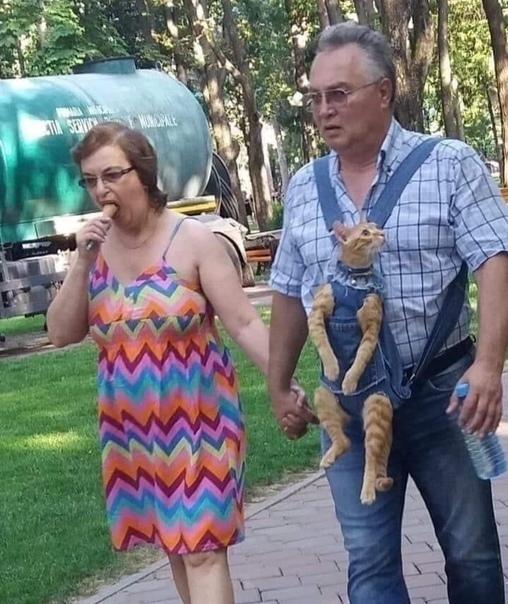 pareja paseando a gato