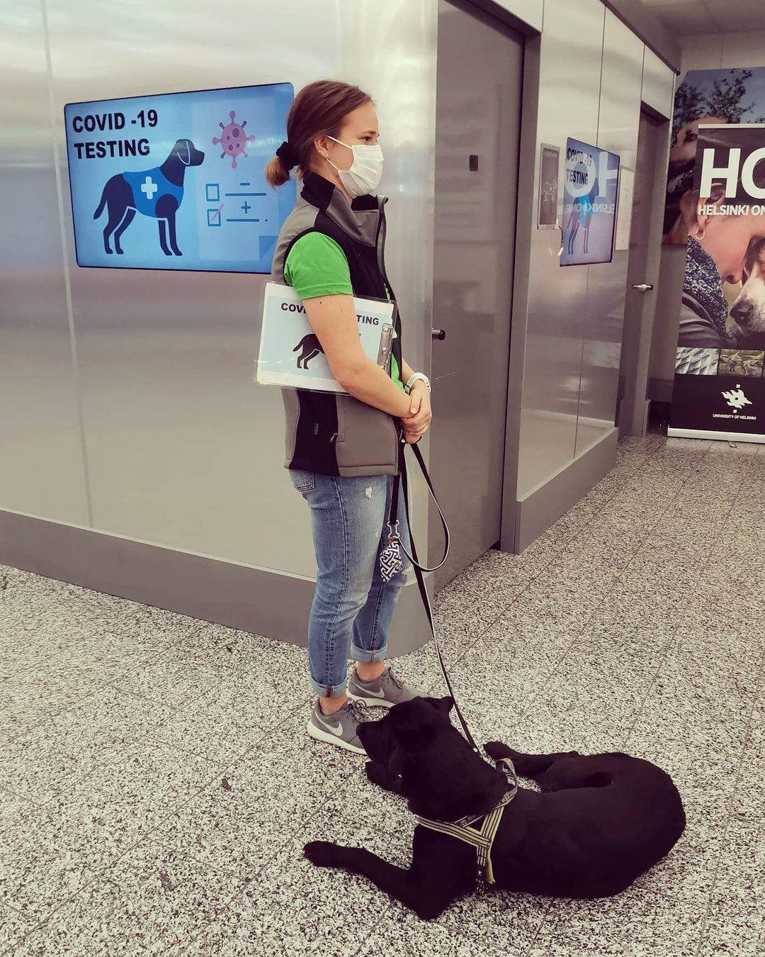 perros detectores Finlandia