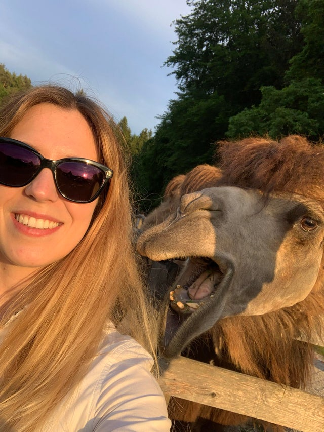 selfie con aladín