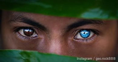 tribu-ojo-azul