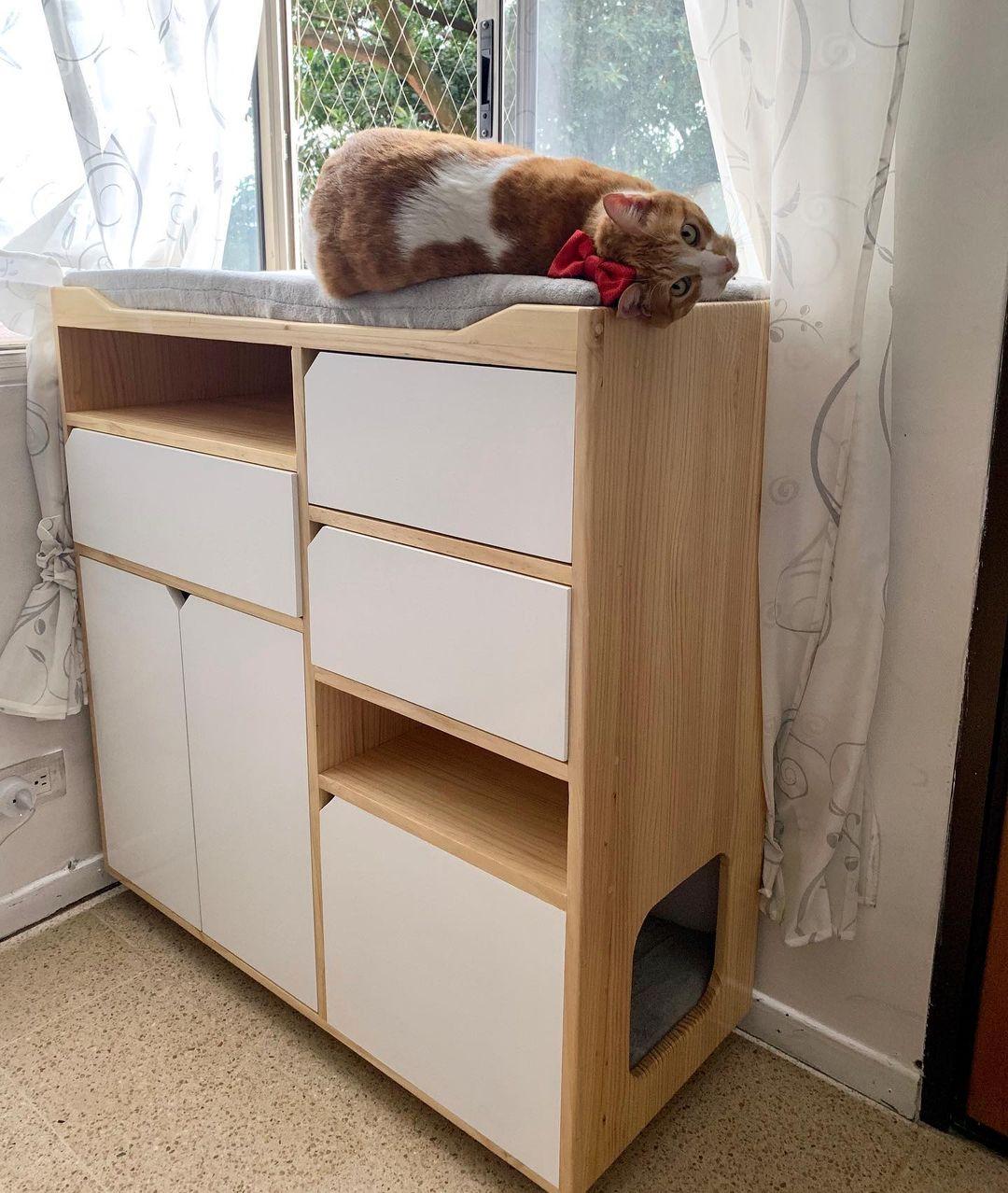 cómoda con refugio gatos