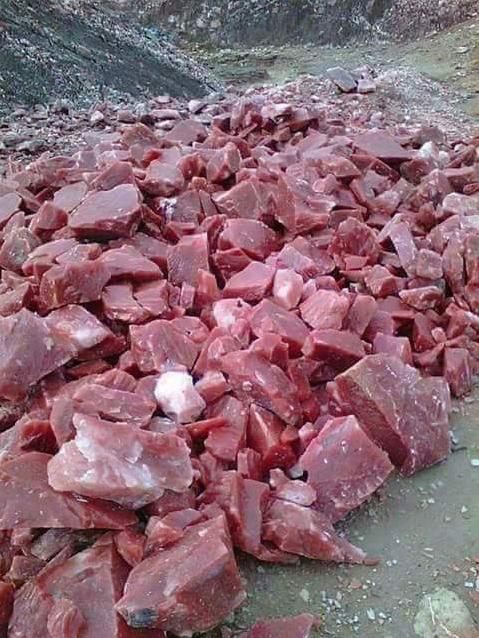 piedra carne