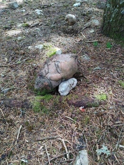piedra forma cabeza