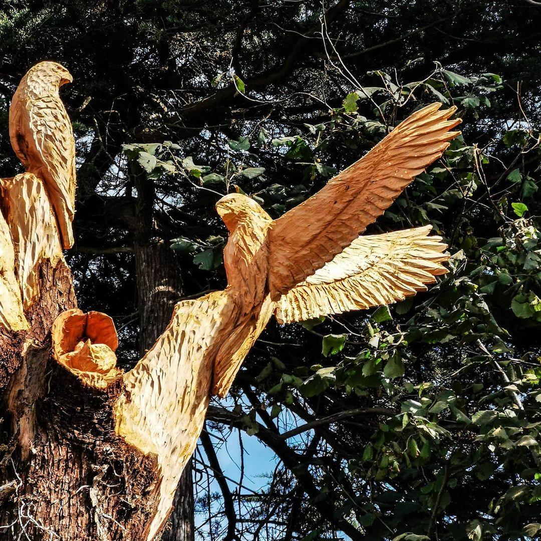 aves talladas en los árboles