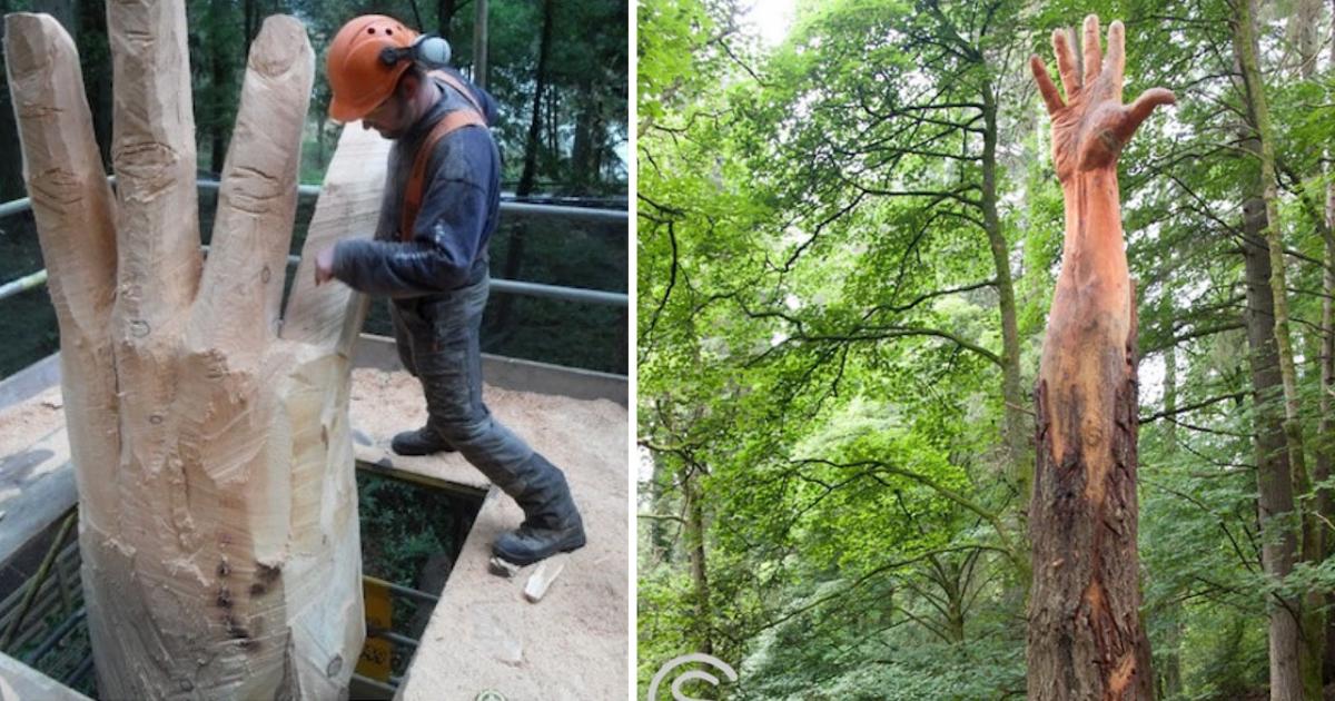 brazo-madera-escultor-arbol