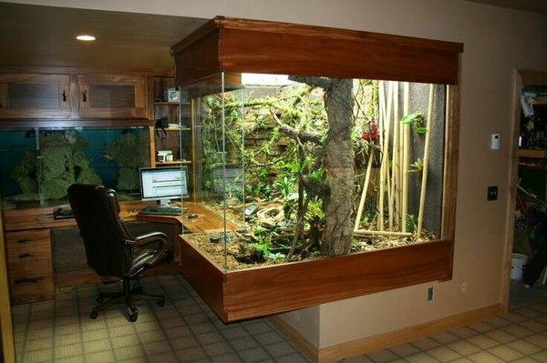 paludario oficina 2