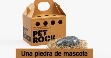 piedra-de-mascota